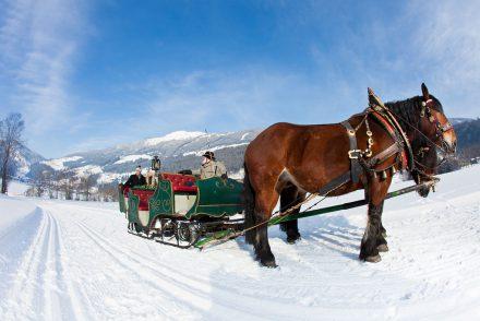 Gerlos Kutschenfahrt Schlitten Winter Berge