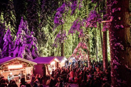 arosa weihnachtsmarkt im zauberwald